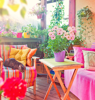 Colors bring life to your backyard
