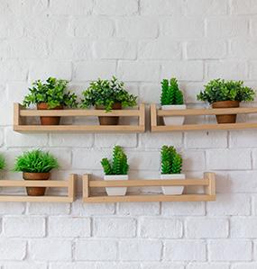 Decorative shelves bring life